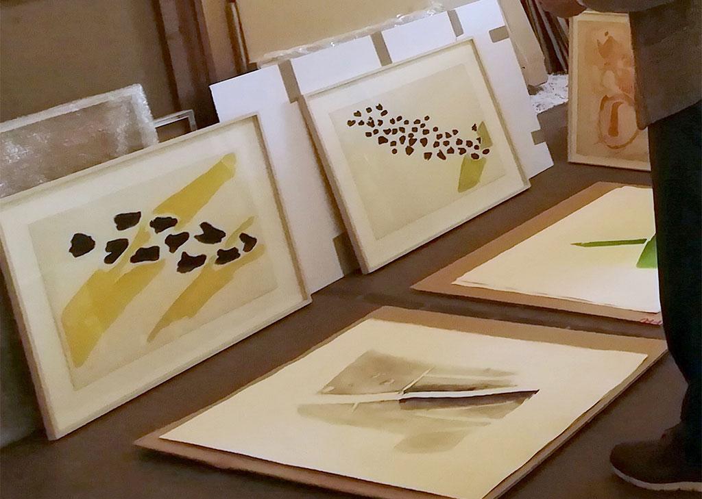 Lithographies Vols d'oiseaux et aquatintes de Pierre Tal Coat